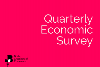 Q3 Quarterly Economic Survey is now open