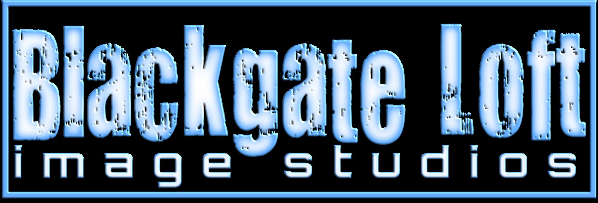 blackgate loft image studios  wpchambercouk
